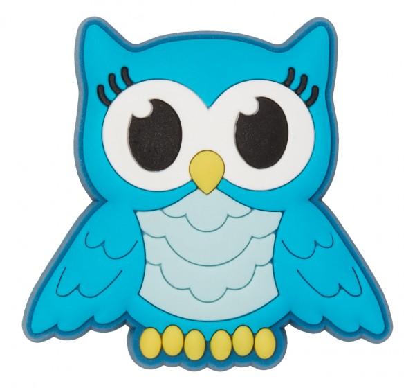 Turquoise Night Owl